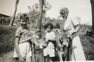 family and cows